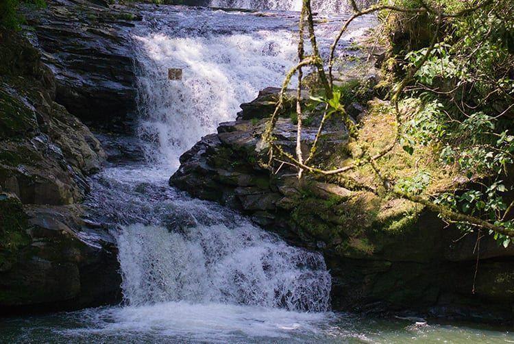 reservaecologicafamilialima-familialima-cascata-cachoeira-natureza-sitio-passeio-descanso-tranquilidade-jumpers14