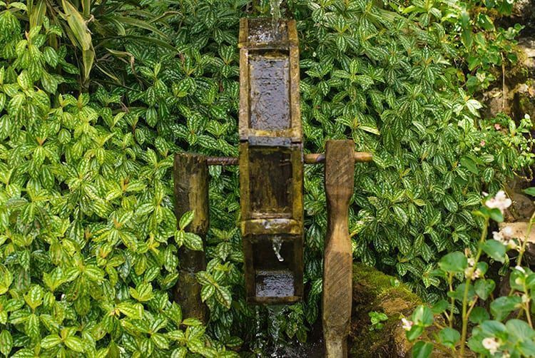 reservaecologicafamilialima-familialima-cascata-cachoeira-natureza-sitio-passeio-descanso-tranquilidade-jumpers15